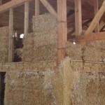 ossature bois-isolation alternative